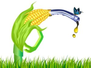 Biofuel: Food or Poison?