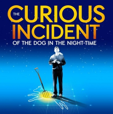 The Curious Incident of the Dog in the Night-Time: A True Review of the Heart