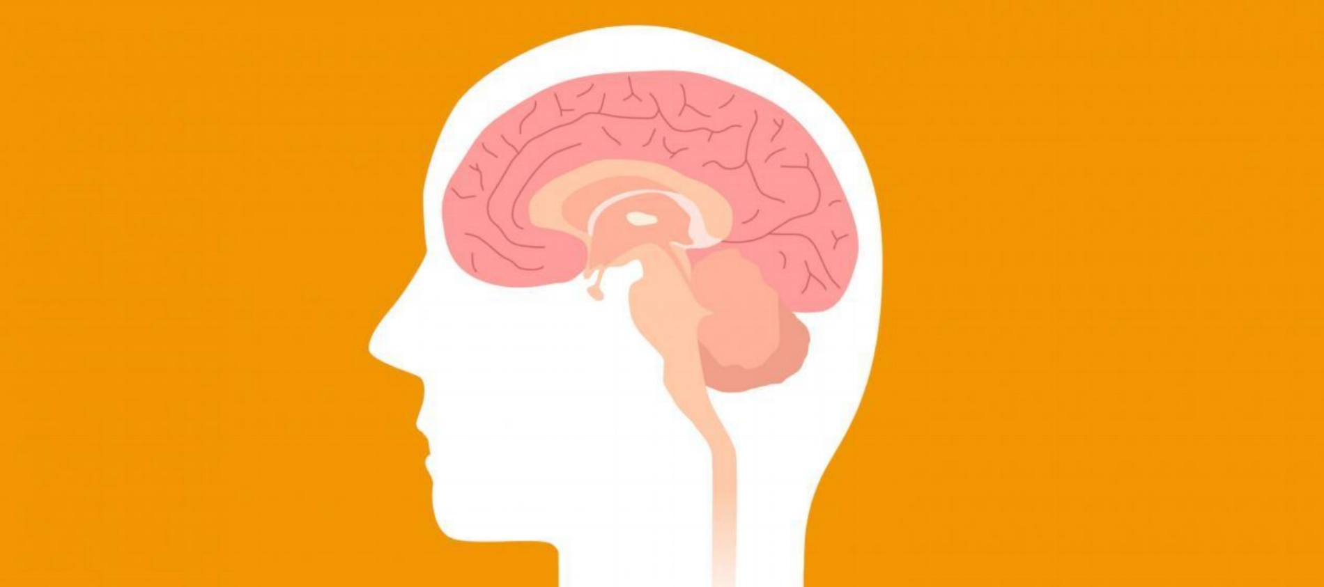 Concussions: A Linguistic Approach
