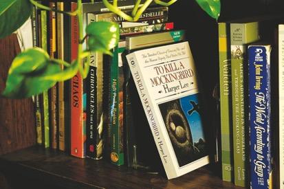 Questioning Classic Novels