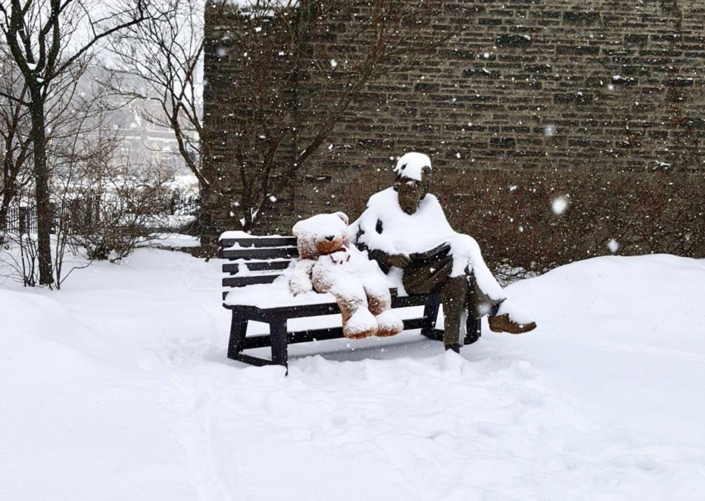 Across Canada, Universities Begin to Announce Their Winter Semester Plans